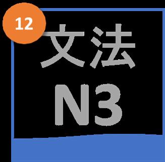 Gram N3 12