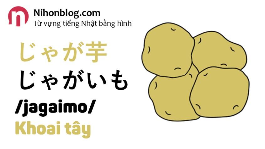 jagaimo-khoai-tay
